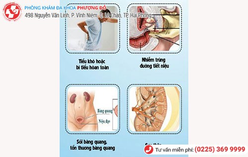 Các bệnh tuyến tiền liệt gây nhiều biến chứng nguy hiểm