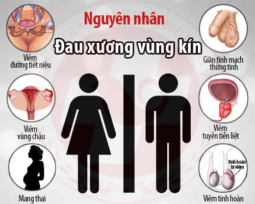 Nguyên nhân gây đau xương vùng kín