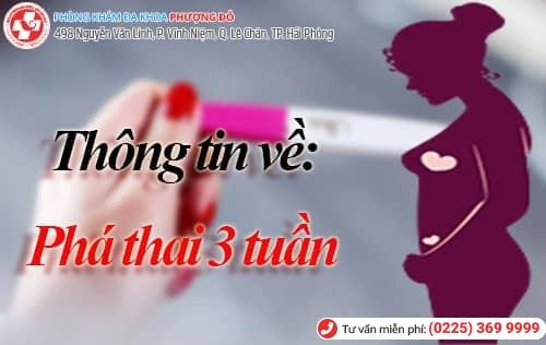 Thông tin về bỏ thai 3 tuần tuổi