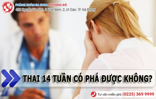 Thai 15 tuần